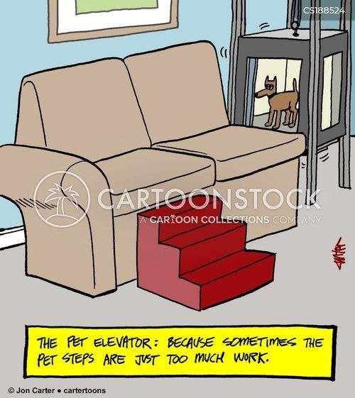dog toys cartoon