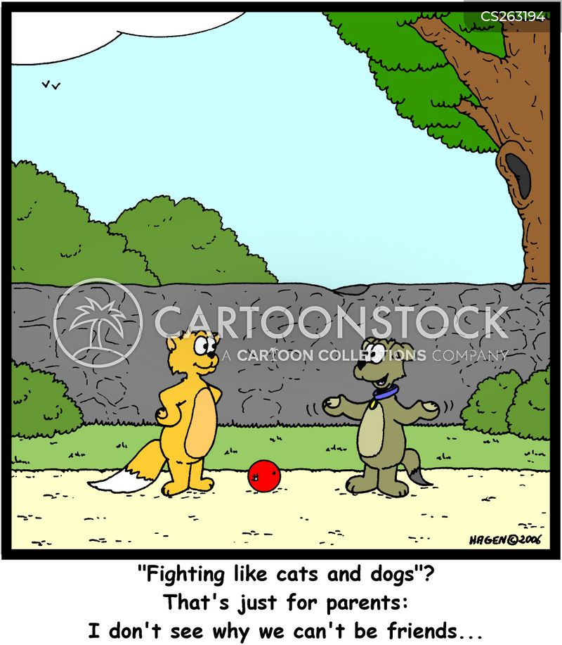 fighting like cats and dogs cartoon