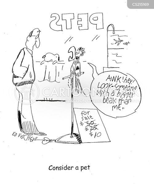 petstores cartoon