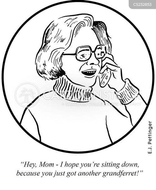 ferret cartoon