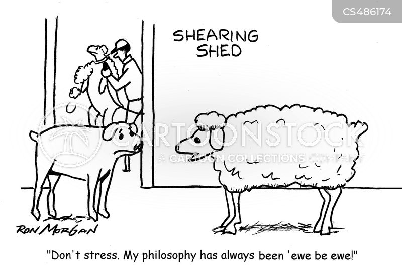Shearers cartoons, Shearers cartoon, funny, Shearers picture, Shearers pictures, Shearers image, Shearers images, Shearers illustration, Shearers illustrations