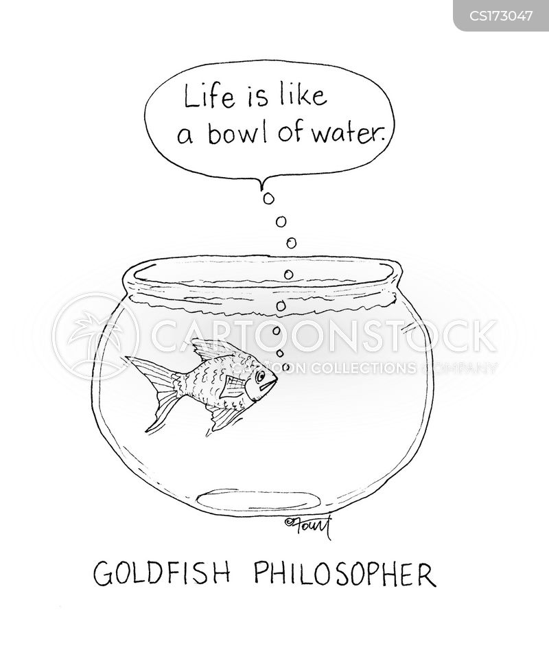 goldfishes cartoon