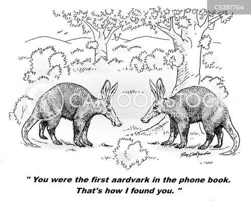 aardvarks cartoon
