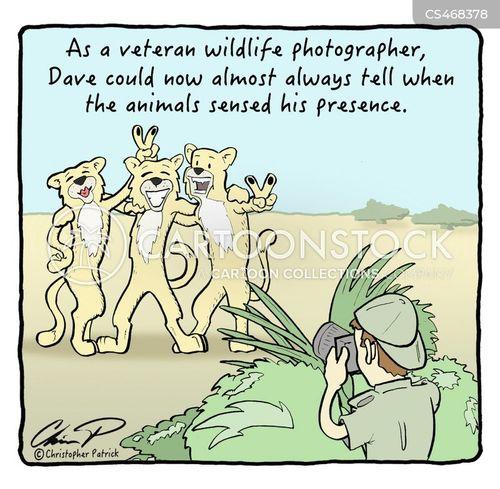 nature photographer cartoon