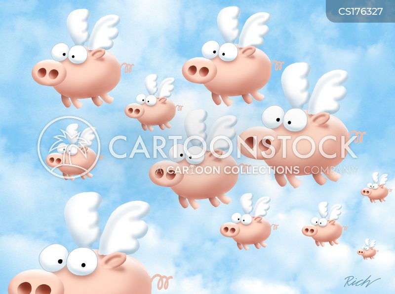 Flying Pig Cartoons And Comics Funny Pictures From Cartoonstock