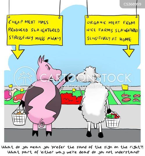 free range farm cartoon