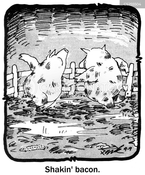 sties cartoon