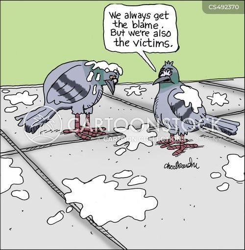 bird-poops cartoon