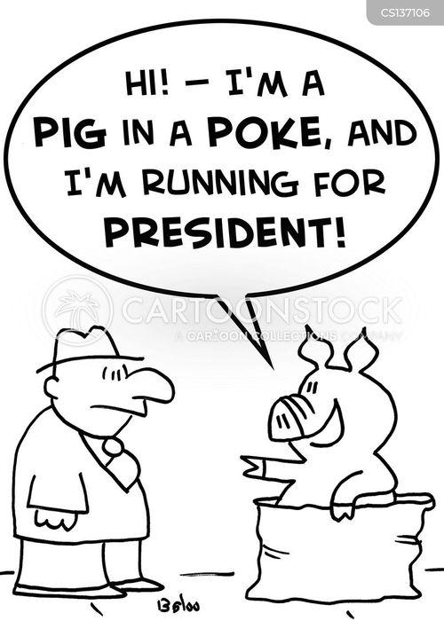 pig in a poke cartoon