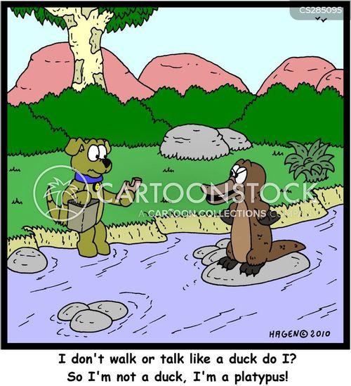 tasmania cartoon