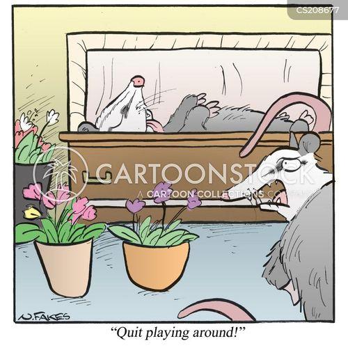 possum cartoon