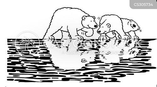 polar bear cubs cartoon