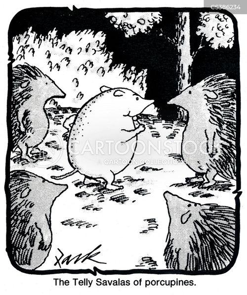 shaven cartoon