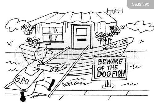 dogfish cartoon
