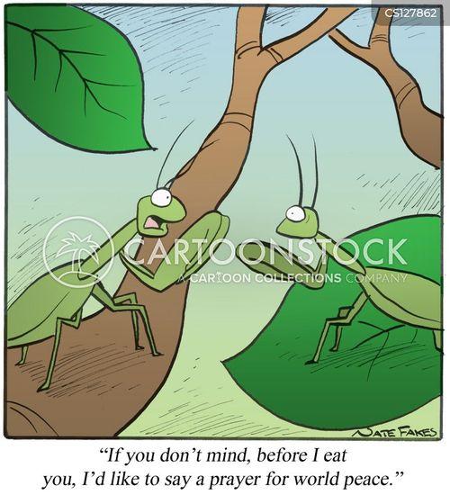 mantises cartoon