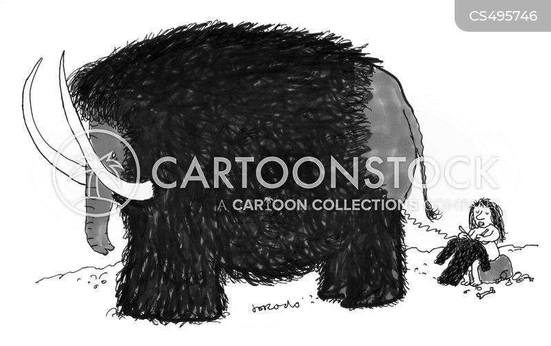 cardigan cartoon