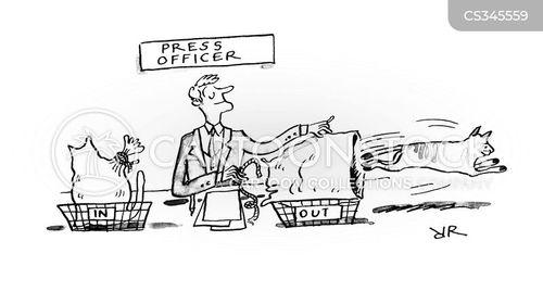 medias cartoon