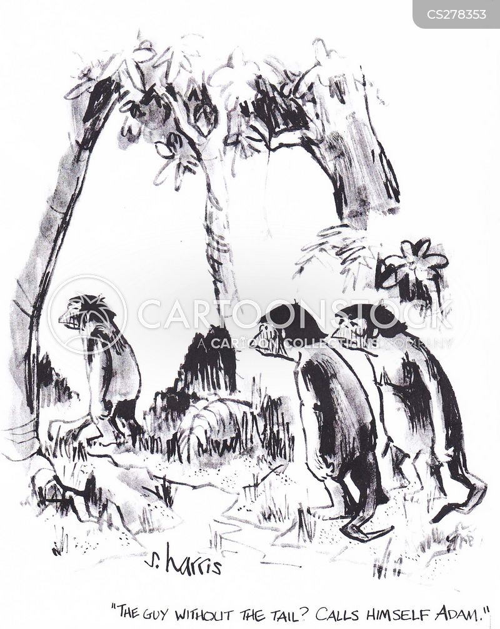 first men cartoon