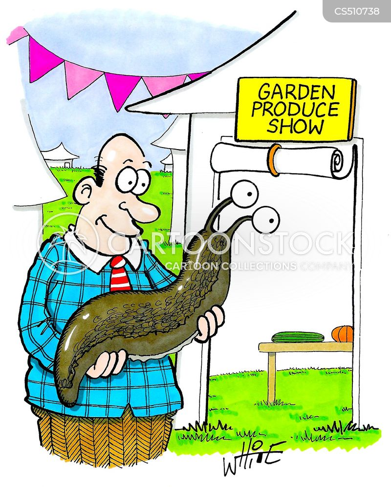 prize vegetable cartoon