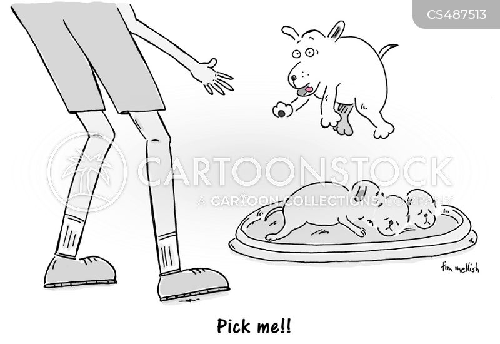 pick me cartoon