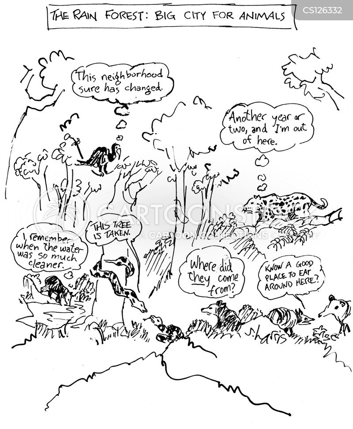 jungle animal cartoon