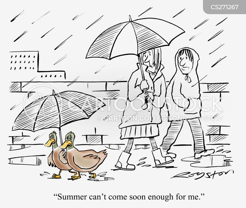 Ducks Under Umbrella One Says Summer Cant Come Soon Enough For Me