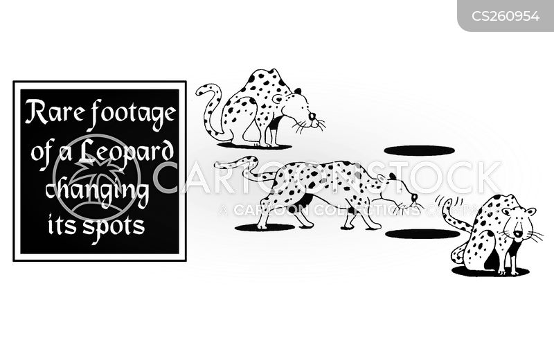 Leopards cartoons, Leopards cartoon, funny, Leopards picture, Leopards pictures, Leopards image, Leopards images, Leopards illustration, Leopards illustrations