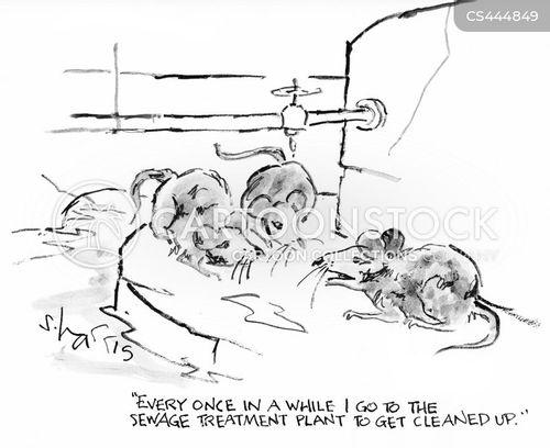 drains cartoon