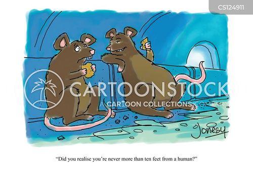 rat habitat cartoon