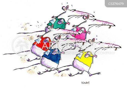 rat-race cartoon