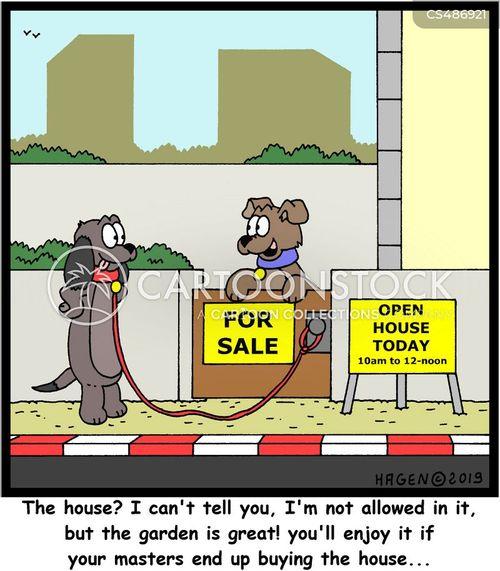 open houses cartoon