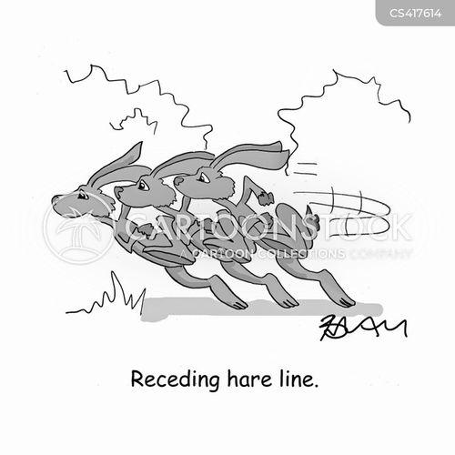 receding hairline cartoon
