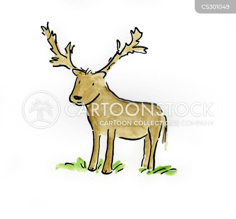 bambi cartoon