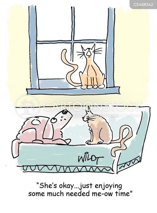 meowing cartoon