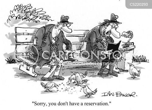 feeding the pigeons cartoon