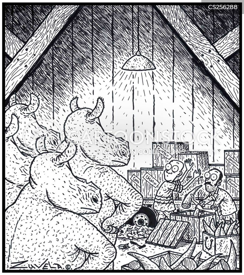 rhinocerotidae cartoon