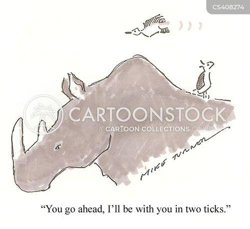 hornbill cartoon