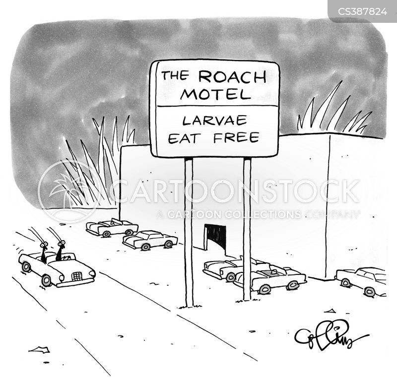 larvaes cartoon