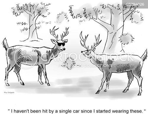 hit by a car cartoon