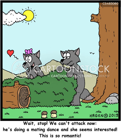 mating dance cartoon