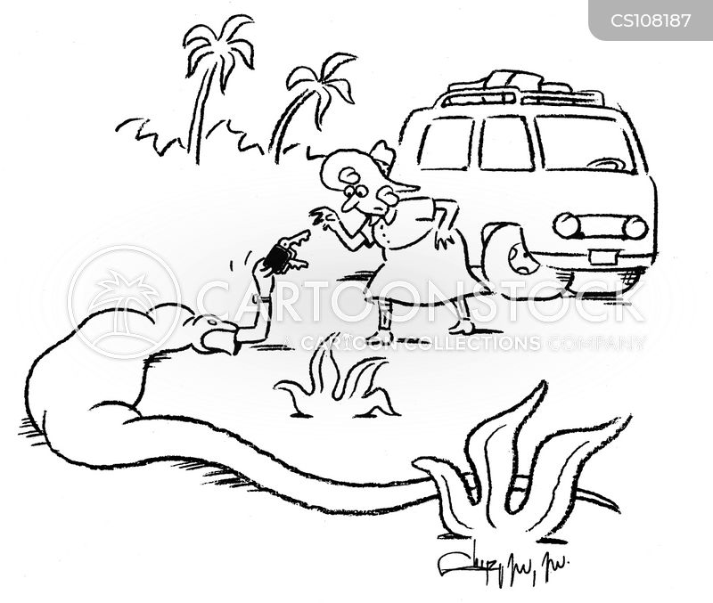 safari holidays cartoon