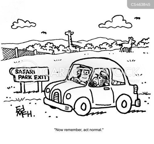 wildlife park cartoon