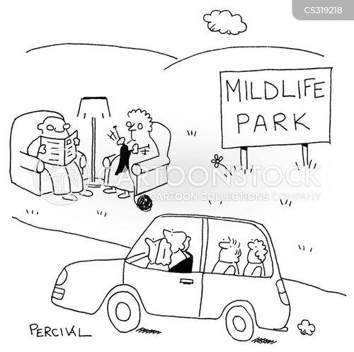 safari park cartoon