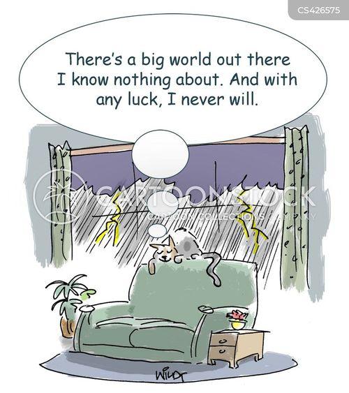life experiences cartoon