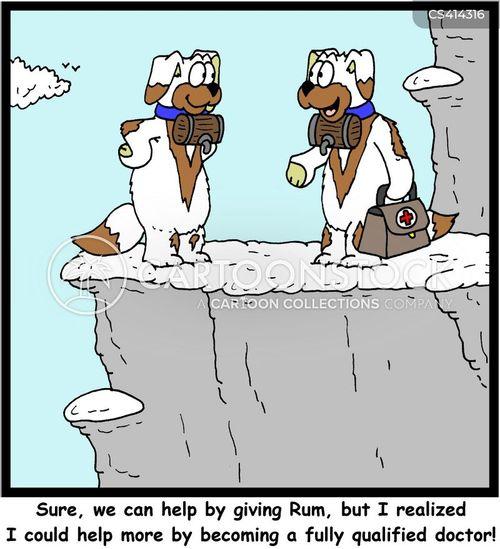 st. bernard cartoon