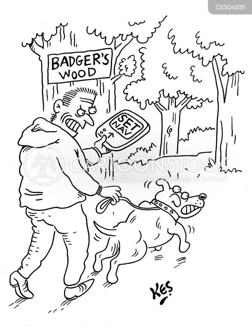 badger set cartoon