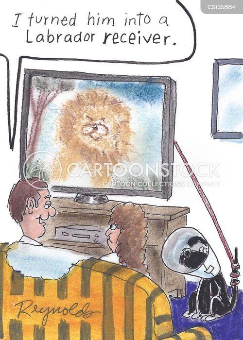 television signals cartoon