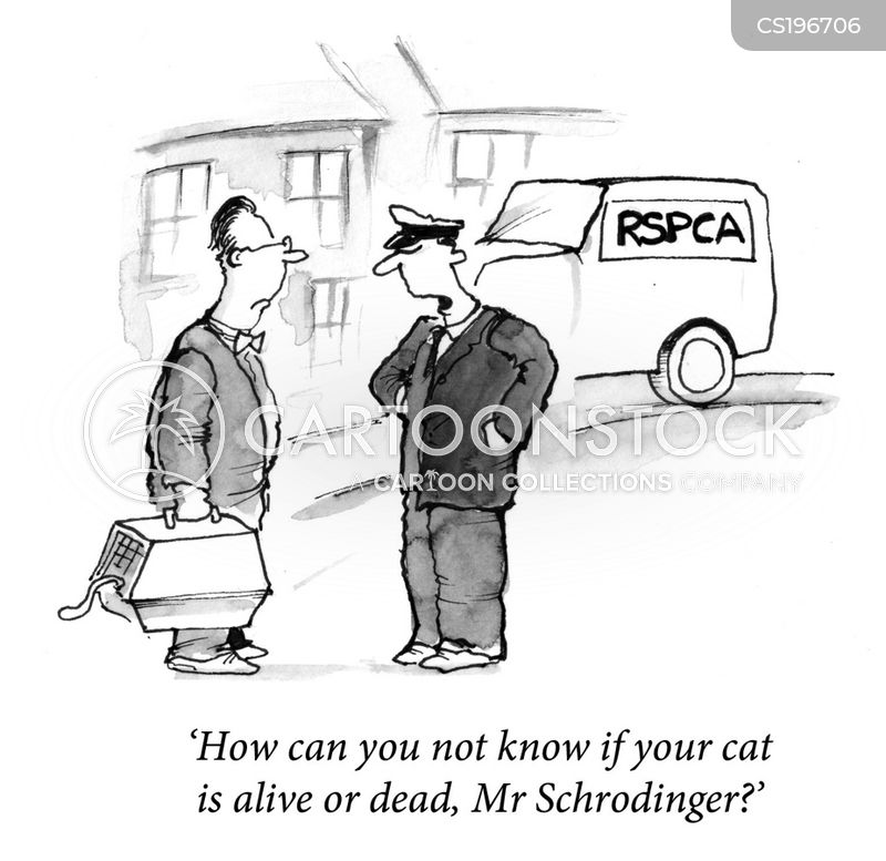 schrodingers cat cartoon