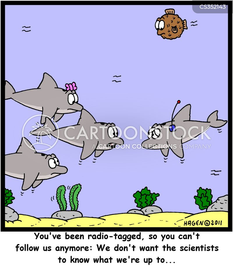 corals cartoon