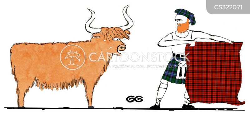highland cows cartoon